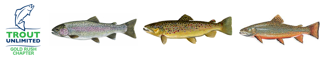 Gold Rush Chapter - Trout Unlimited